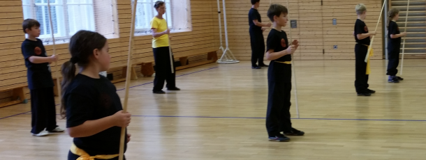 """Seminar zum Thema """"Shaolin Basics und Stock"""""""