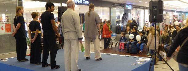 Kung Fu Show bei den Pankower Sicherheitstagen